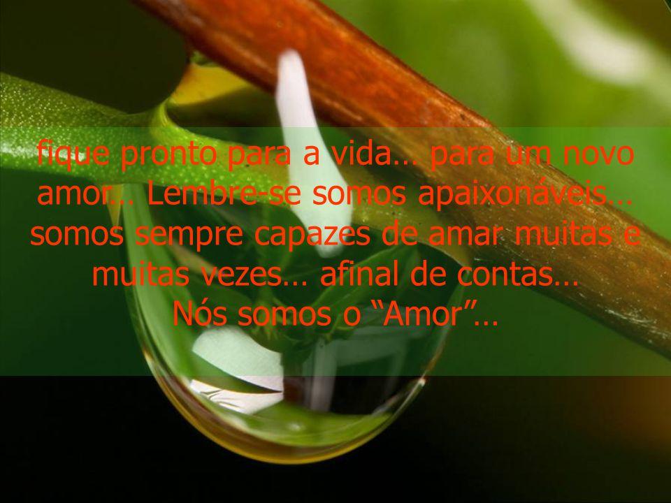 fique pronto para a vida… para um novo amor… Lembre-se somos apaixonáveis… somos sempre capazes de amar muitas e muitas vezes… afinal de contas…