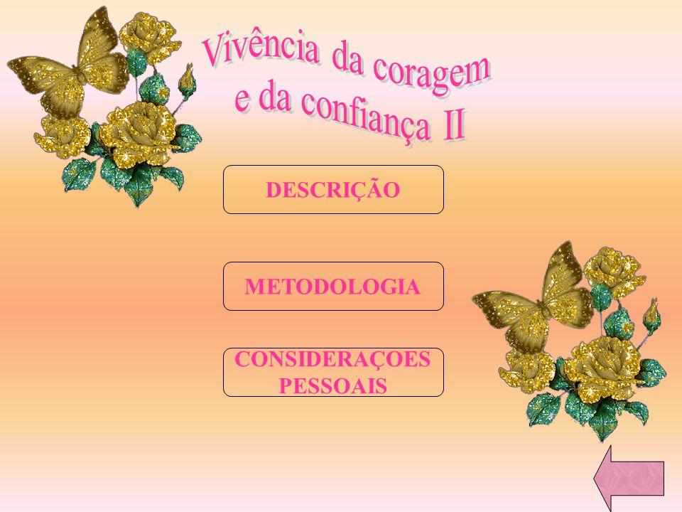 Vivência da coragem e da confiança II DESCRIÇÃO METODOLOGIA