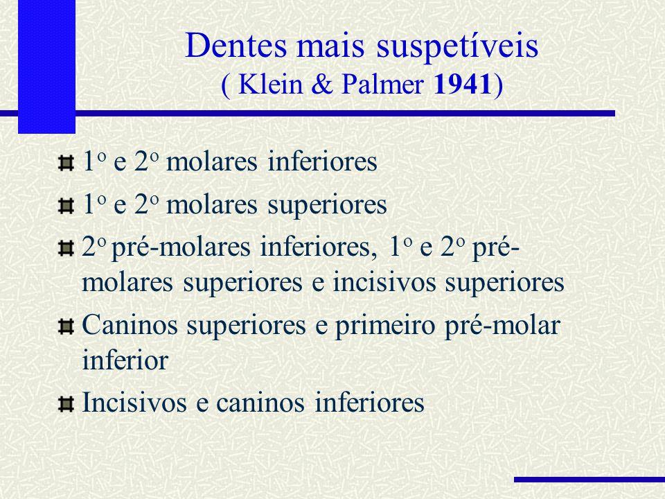 Dentes mais suspetíveis ( Klein & Palmer 1941)