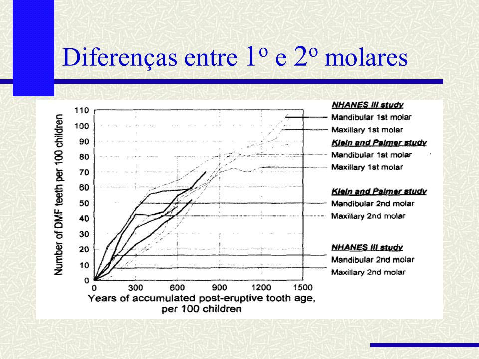 Diferenças entre 1o e 2o molares