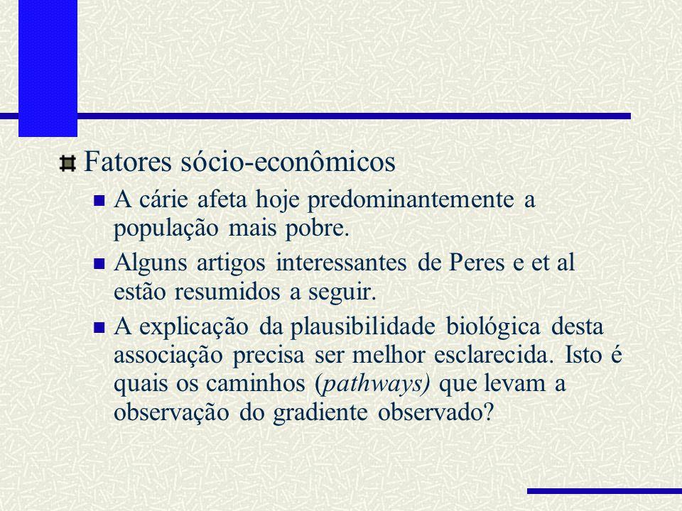 Fatores sócio-econômicos