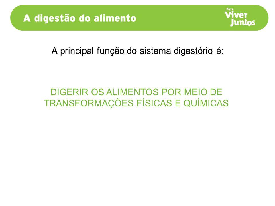 A principal função do sistema digestório é:
