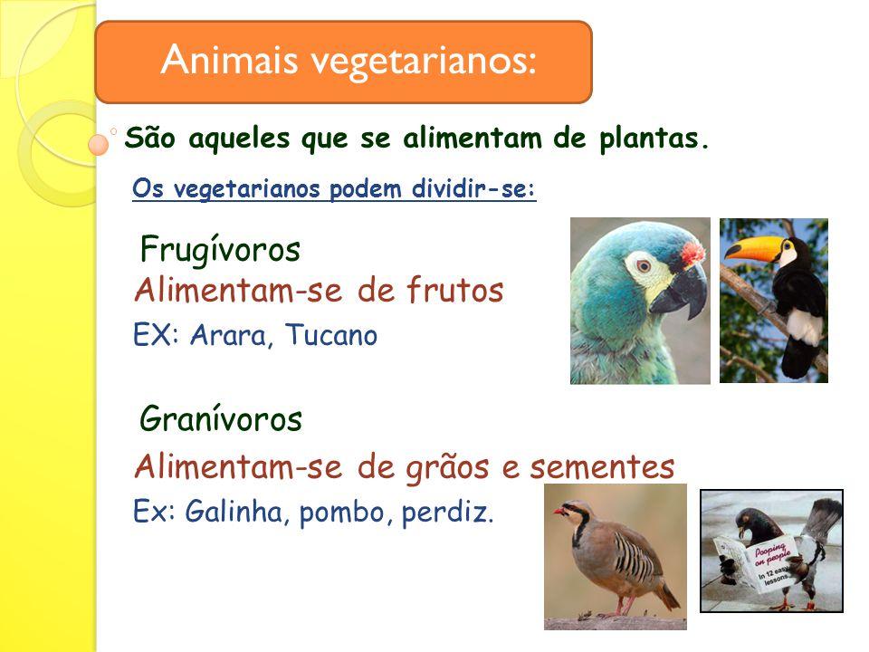 Animais vegetarianos: