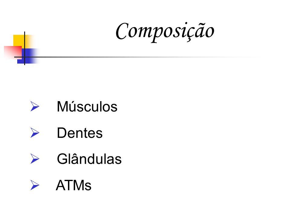 Composição Músculos Dentes Glândulas ATMs