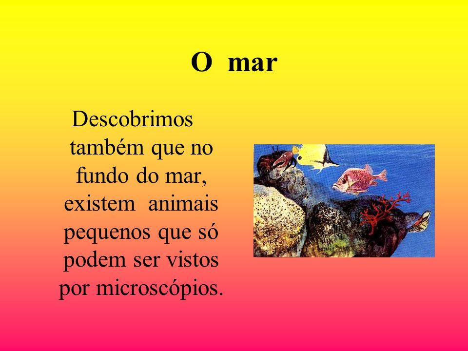 O mar Descobrimos também que no fundo do mar, existem animais pequenos que só podem ser vistos por microscópios.