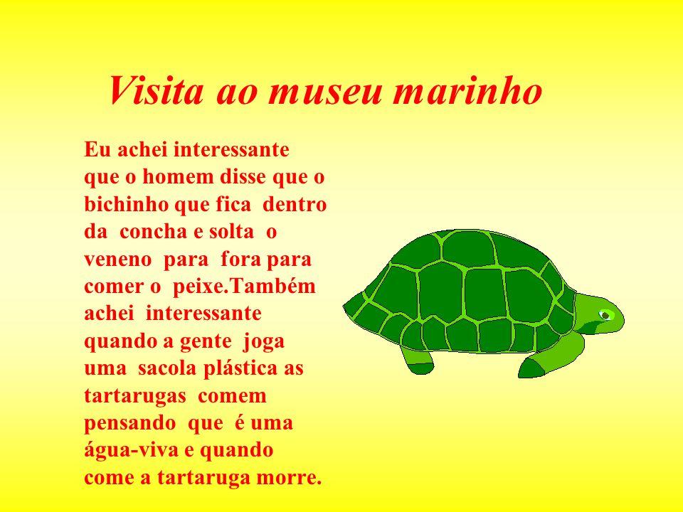 Visita ao museu marinho