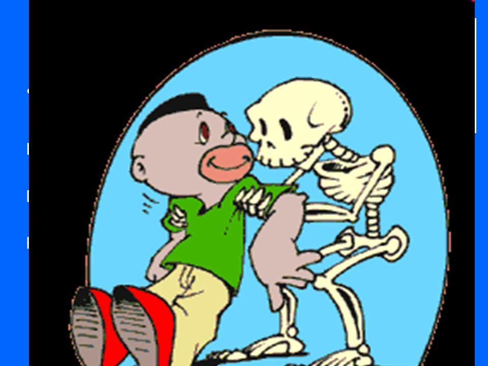 O esqueleto É muito importante porque: