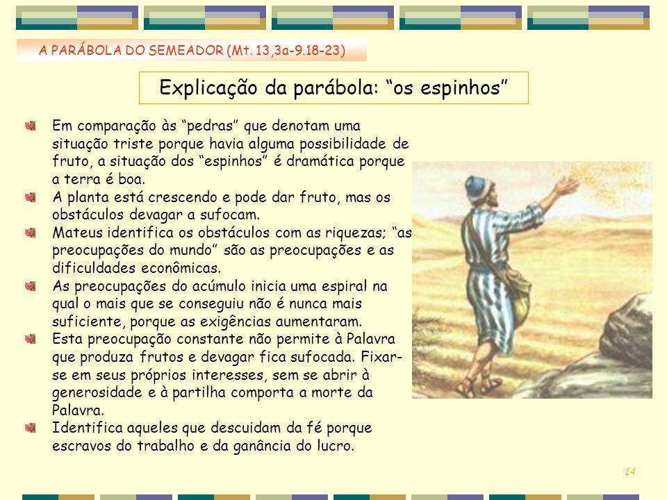 Explicação da parábola: os espinhos