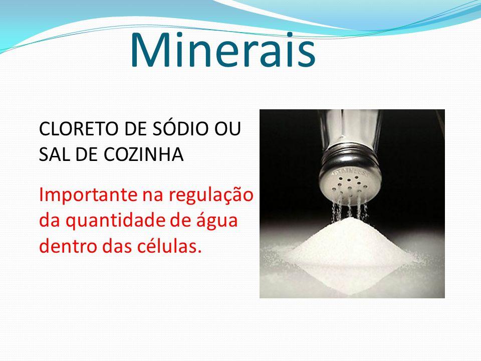 Minerais CLORETO DE SÓDIO OU SAL DE COZINHA