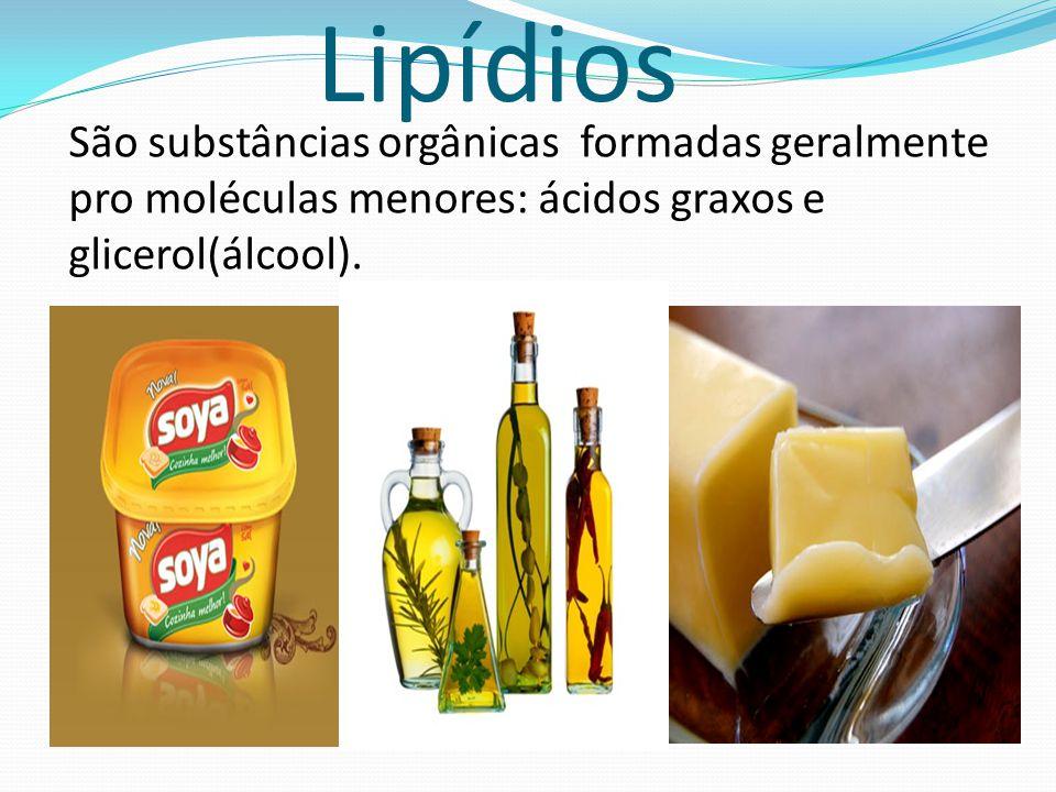 Lipídios São substâncias orgânicas formadas geralmente pro moléculas menores: ácidos graxos e glicerol(álcool).