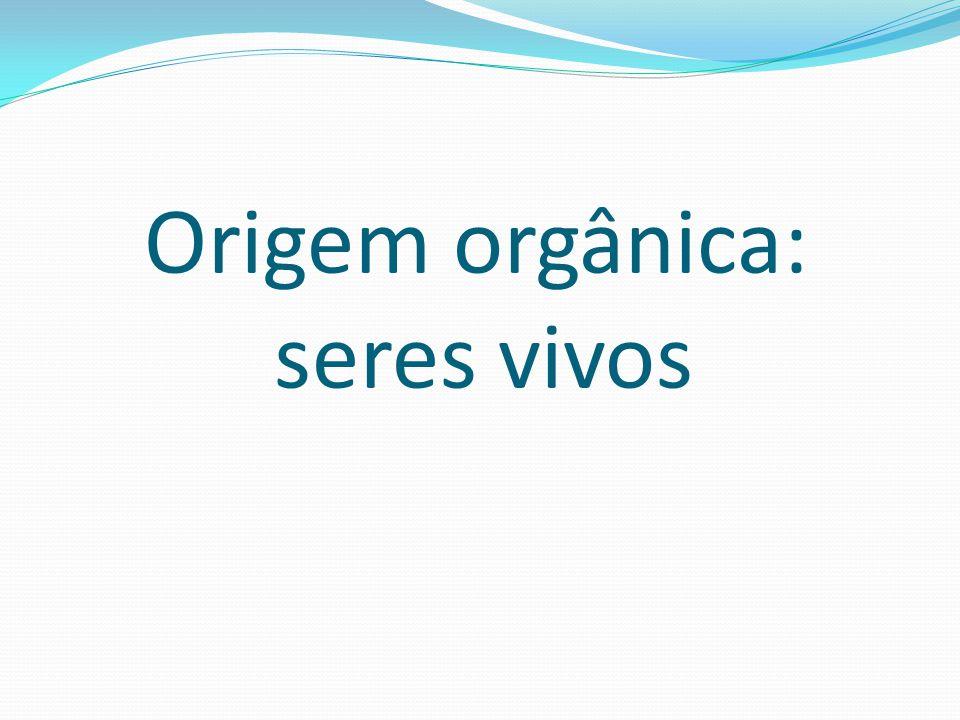Origem orgânica: seres vivos
