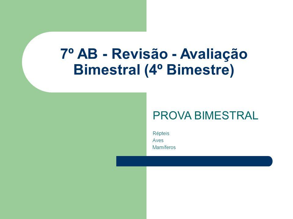 7º AB - Revisão - Avaliação Bimestral (4º Bimestre)