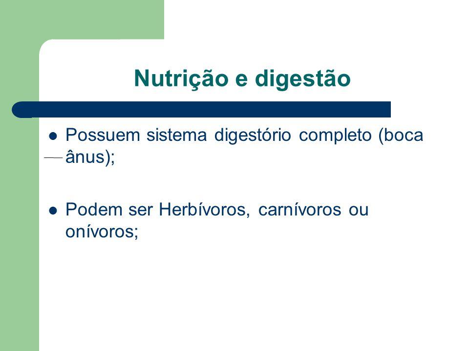 Nutrição e digestão Possuem sistema digestório completo (boca ânus);
