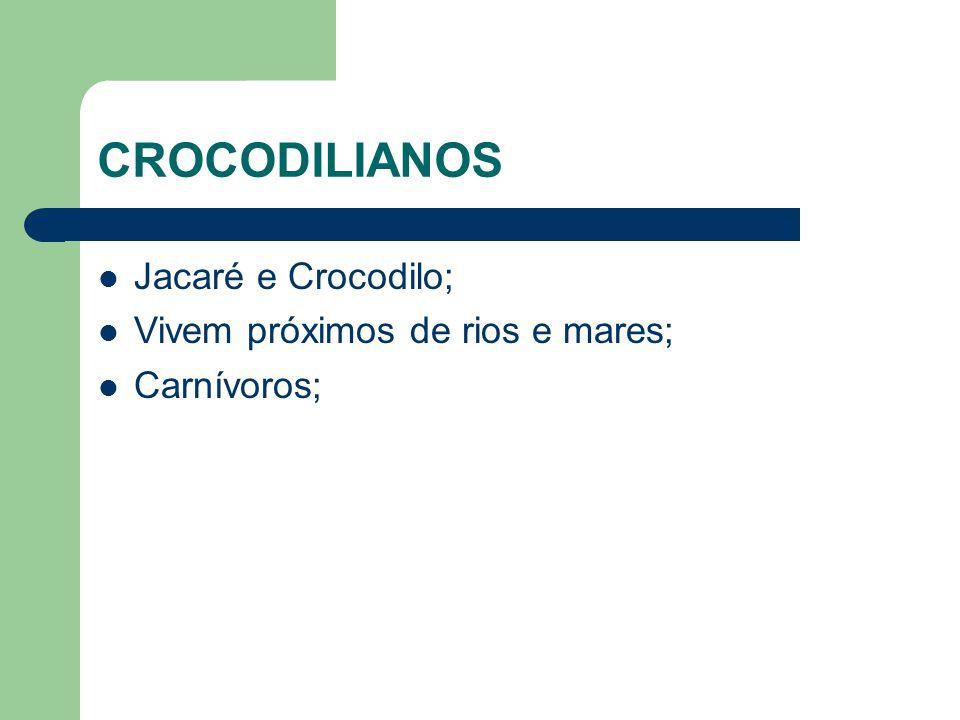 CROCODILIANOS Jacaré e Crocodilo; Vivem próximos de rios e mares;