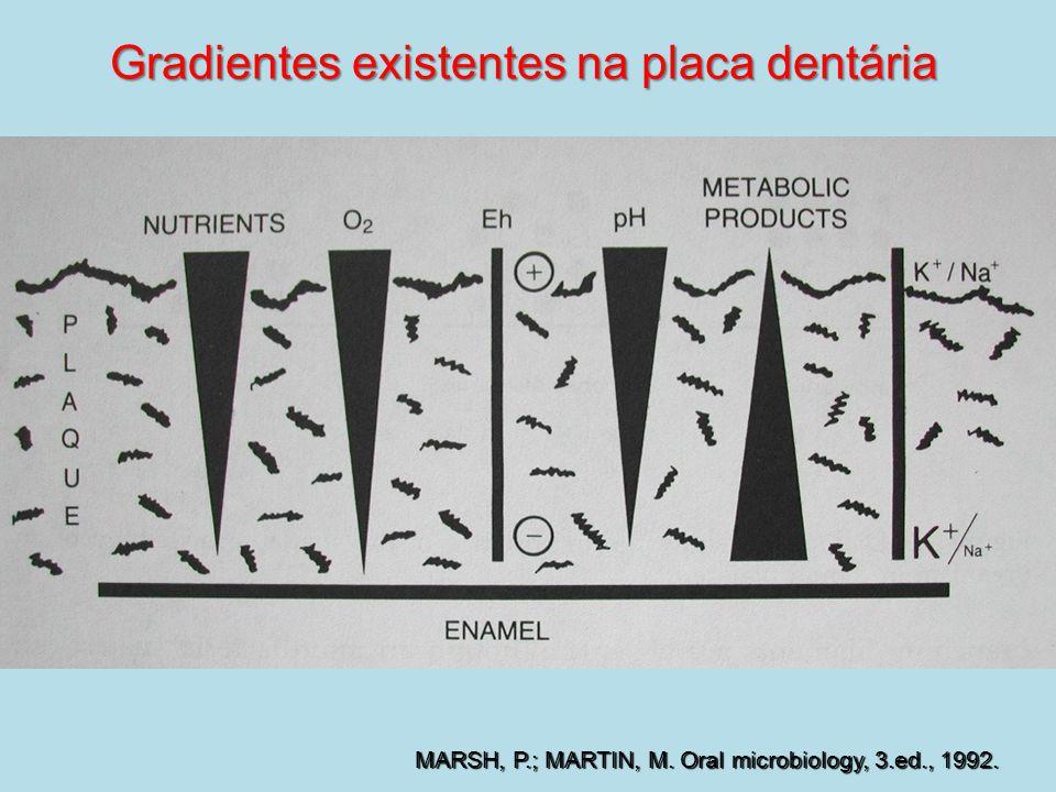 Gradientes existentes na placa dentária