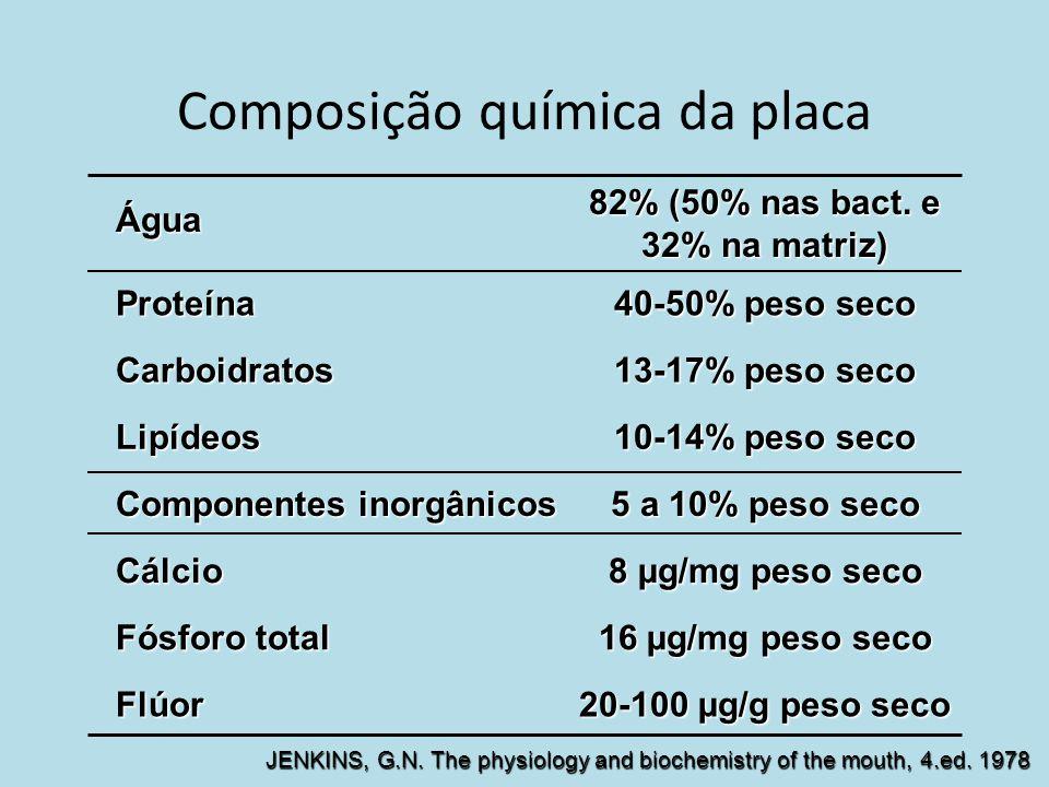 Composição química da placa