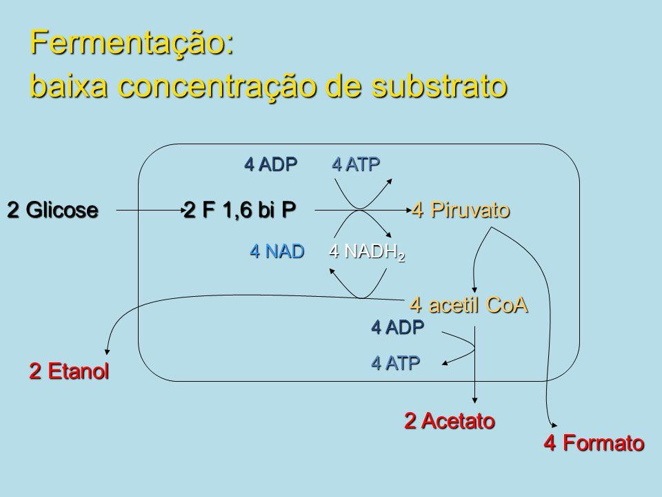 Fermentação: baixa concentração de substrato