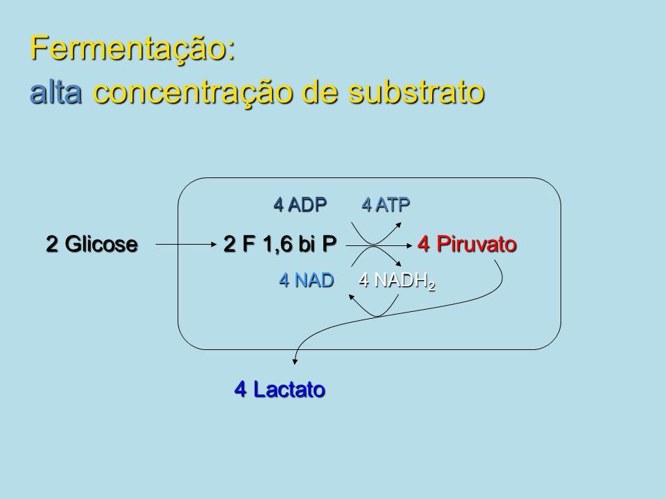Fermentação: alta concentração de substrato