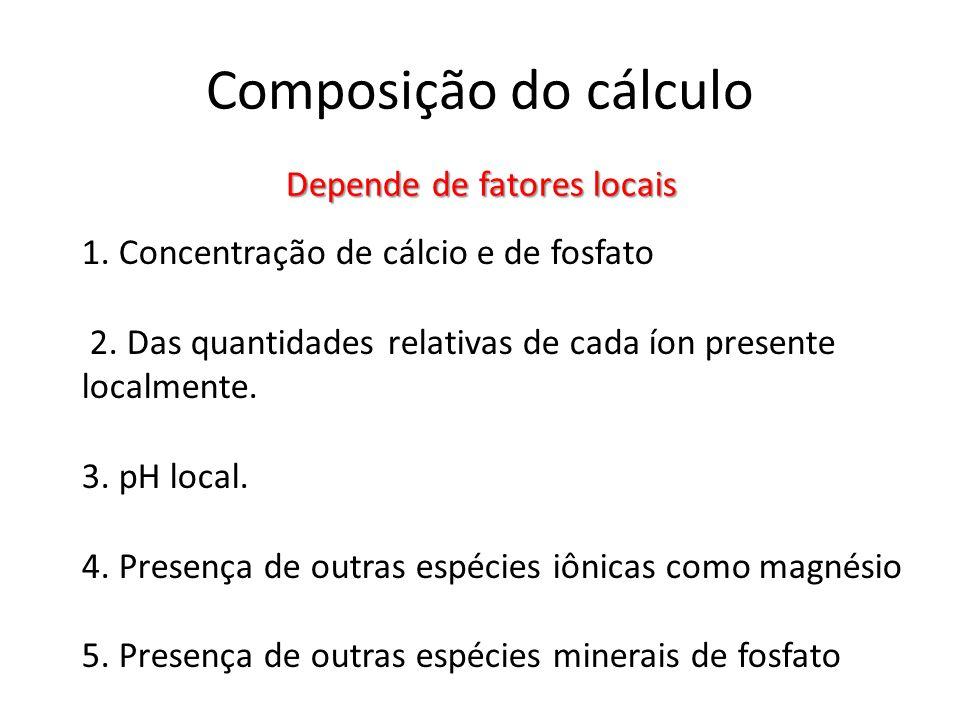 Composição do cálculo Depende de fatores locais