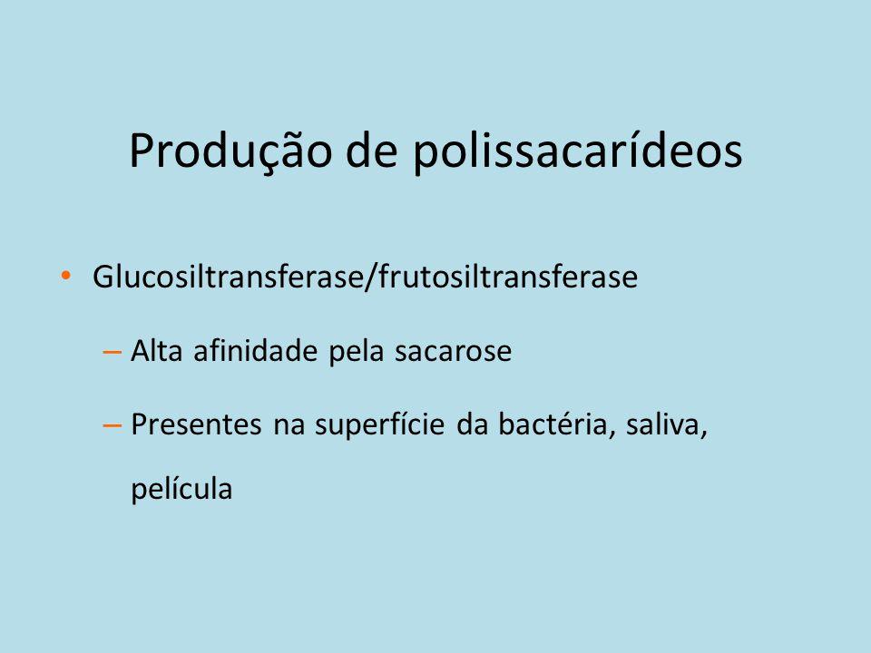 Produção de polissacarídeos