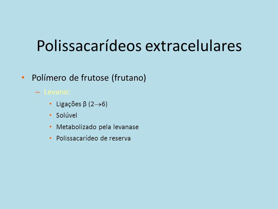 Polissacarídeos extracelulares
