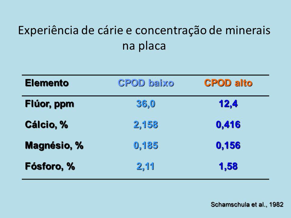 Experiência de cárie e concentração de minerais na placa