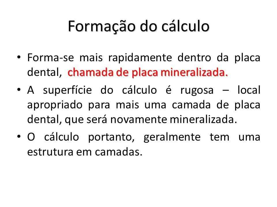 Formação do cálculo Forma-se mais rapidamente dentro da placa dental, chamada de placa mineralizada.