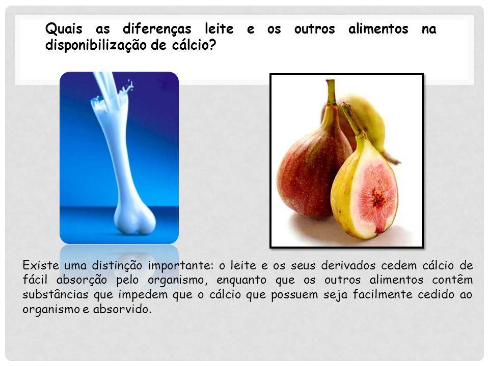 Quais as diferenças leite e os outros alimentos na disponibilização de cálcio