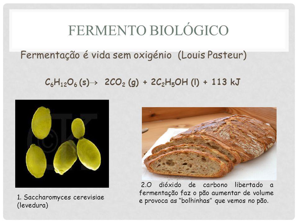 Fermento Biológico Fermentação é vida sem oxigénio (Louis Pasteur)