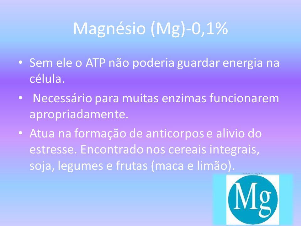 Magnésio (Mg)-0,1% Sem ele o ATP não poderia guardar energia na célula. Necessário para muitas enzimas funcionarem apropriadamente.