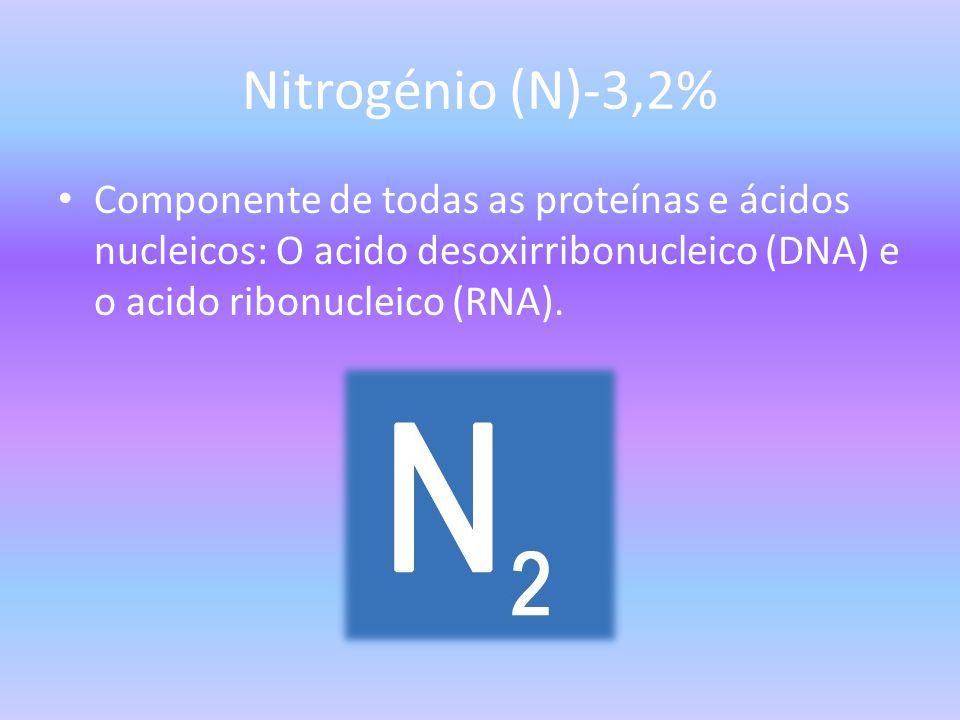Nitrogénio (N)-3,2% Componente de todas as proteínas e ácidos nucleicos: O acido desoxirribonucleico (DNA) e o acido ribonucleico (RNA).