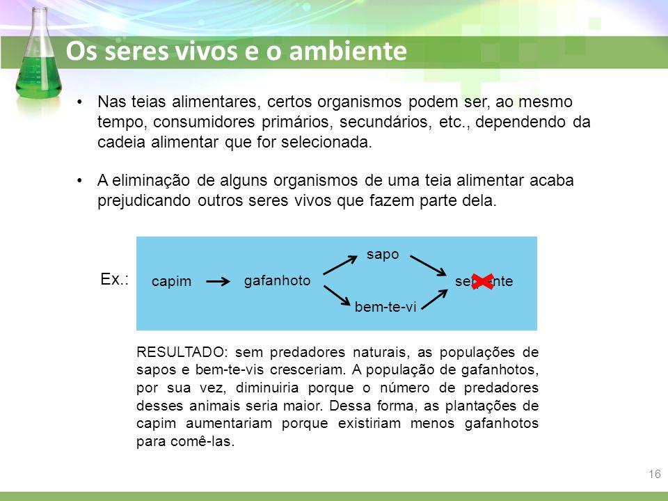 Nas teias alimentares, certos organismos podem ser, ao mesmo tempo, consumidores primários, secundários, etc., dependendo da cadeia alimentar que for selecionada.