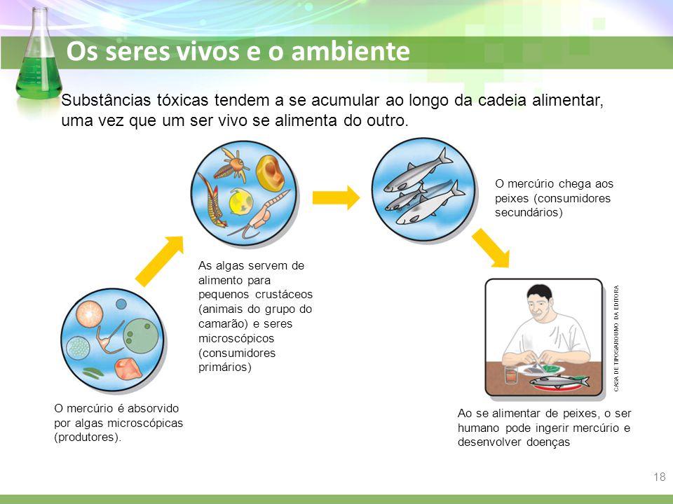 Substâncias tóxicas tendem a se acumular ao longo da cadeia alimentar, uma vez que um ser vivo se alimenta do outro.