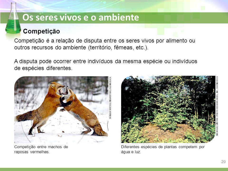 Competição Competição é a relação de disputa entre os seres vivos por alimento ou outros recursos do ambiente (território, fêmeas, etc.).