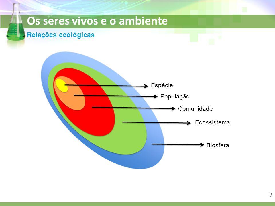 Relações ecológicas Espécie População Comunidade Ecossistema Biosfera