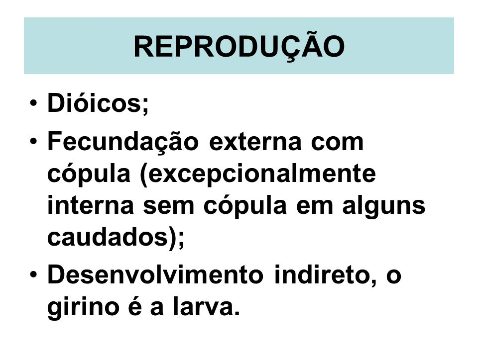 REPRODUÇÃO Dióicos; Fecundação externa com cópula (excepcionalmente interna sem cópula em alguns caudados);