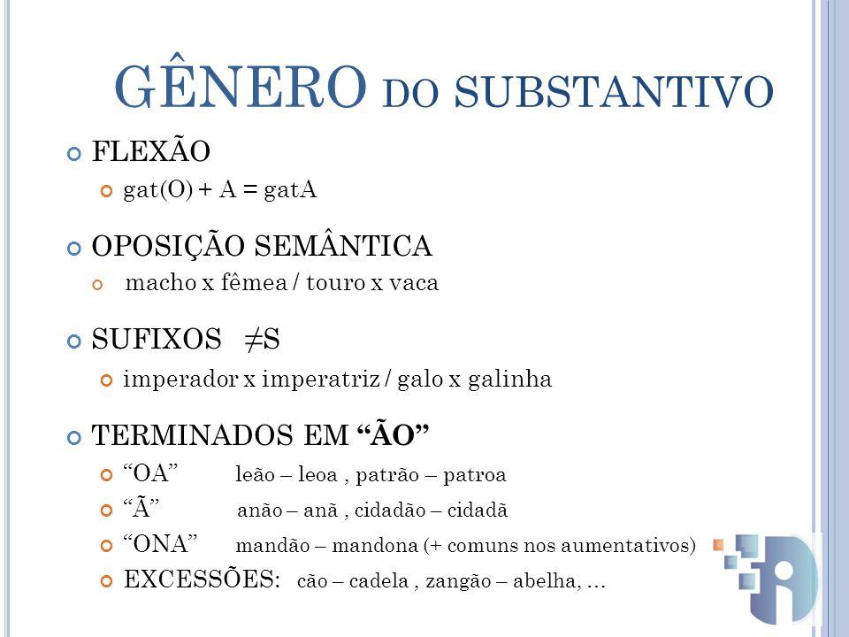 GÊNERO do SUBSTANTIVO FLEXÃO OPOSIÇÃO SEMÂNTICA SUFIXOS ≠S
