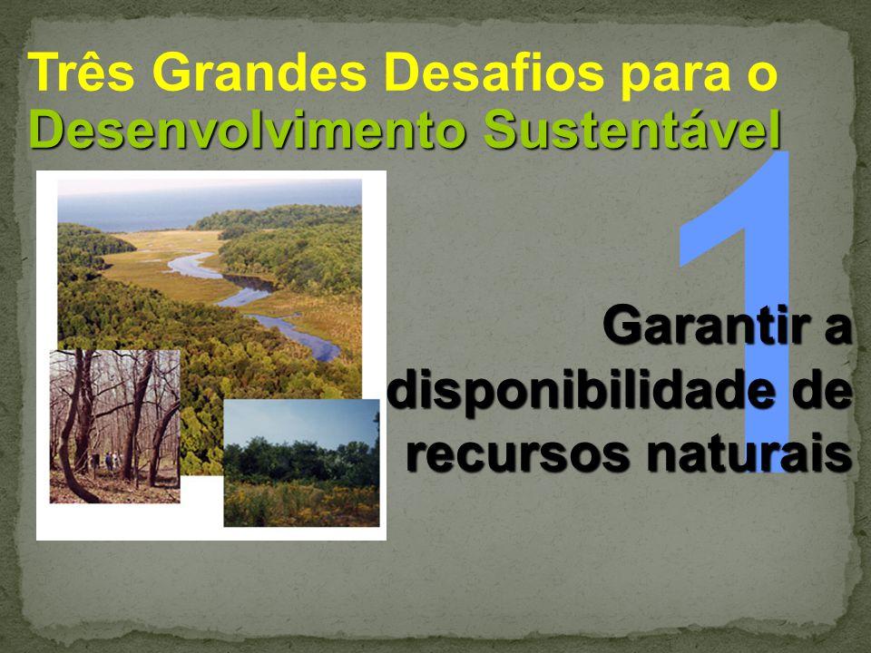 1 Três Grandes Desafios para o Desenvolvimento Sustentável Garantir a
