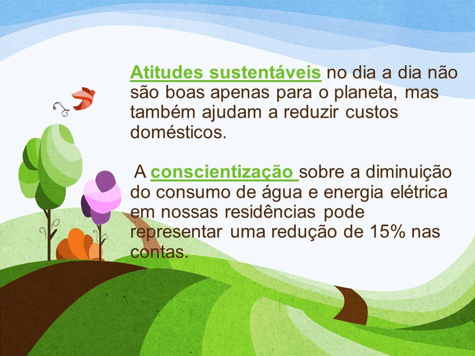 Atitudes sustentáveis no dia a dia não são boas apenas para o planeta, mas também ajudam a reduzir custos domésticos.
