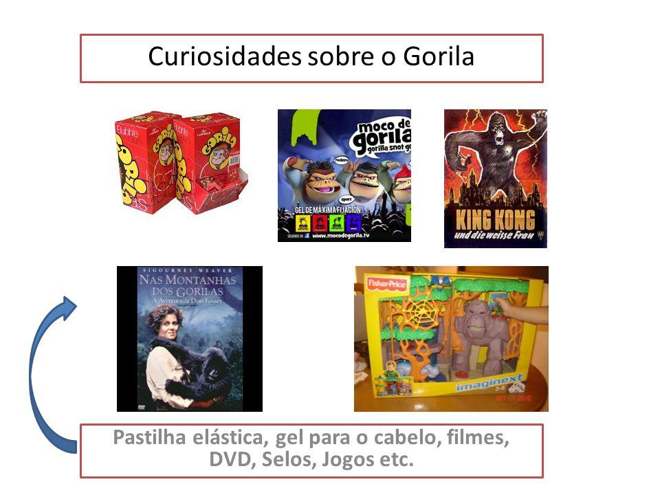 Curiosidades sobre o Gorila