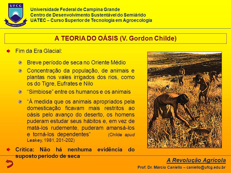 A TEORIA DO OÁSIS (V. Gordon Childe)