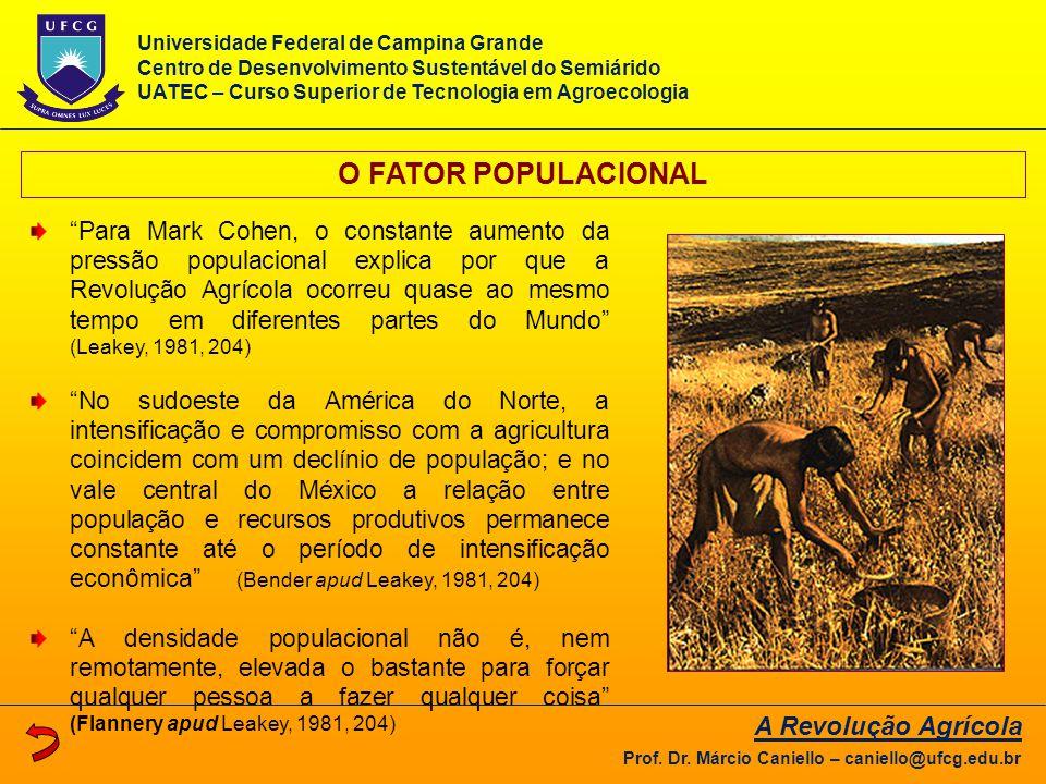 O FATOR POPULACIONAL A Revolução Agrícola