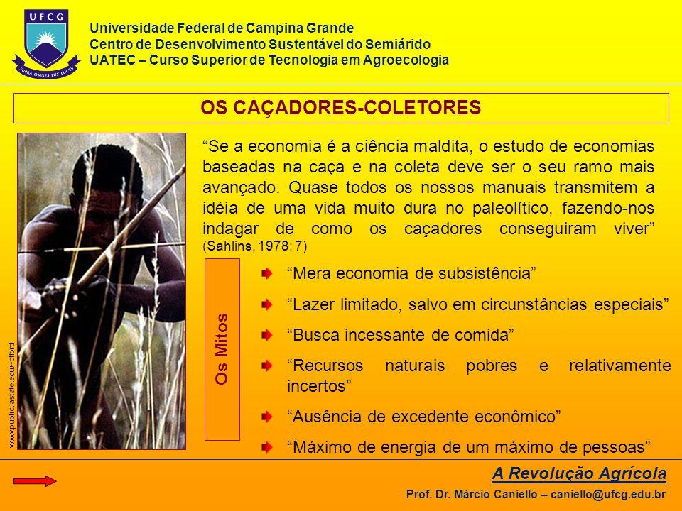OS CAÇADORES-COLETORES
