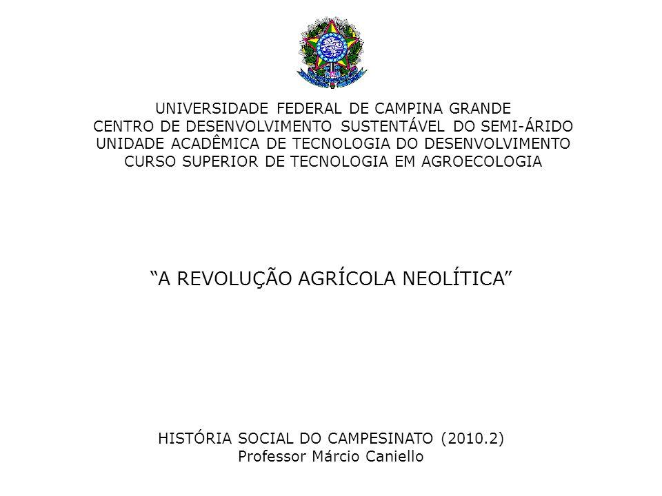 A REVOLUÇÃO AGRÍCOLA NEOLÍTICA