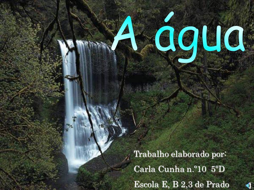 A água Trabalho elaborado por: Carla Cunha n.º10 5ºD