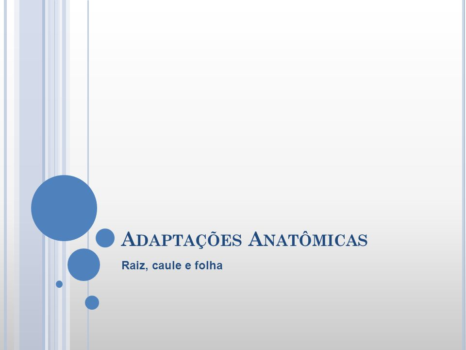 Adaptações Anatômicas