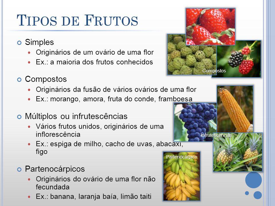 Tipos de Frutos Simples Compostos Múltiplos ou infrutescências