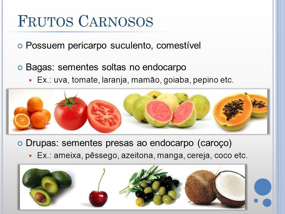 Frutos Carnosos Possuem pericarpo suculento, comestível