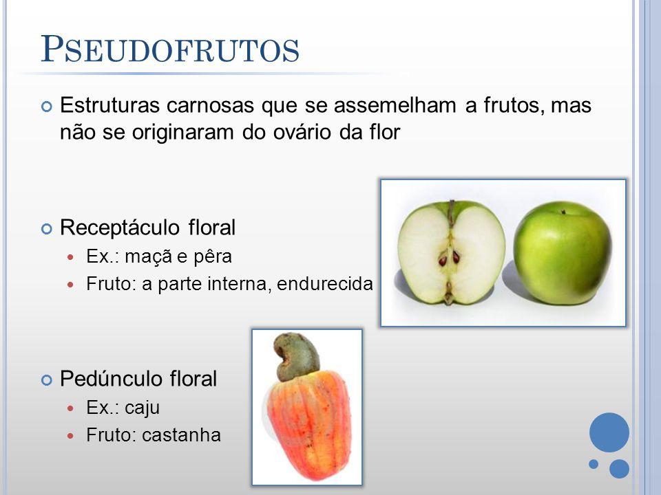Pseudofrutos Estruturas carnosas que se assemelham a frutos, mas não se originaram do ovário da flor.