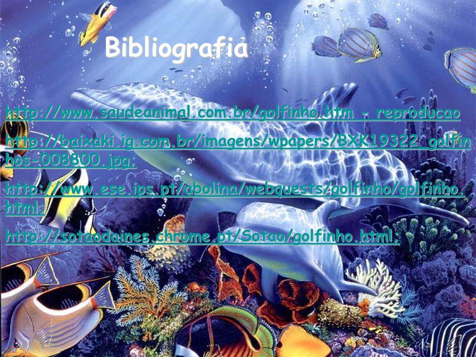 Bibliografia http://www.saudeanimal.com.br/golfinho.htm - reproducao